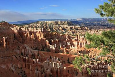 Wall Art - Photograph - Bryce Canyon Afternoon by Tracy Farrand