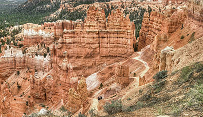 Photograph - Bryce Canyon by Geraldine Alexander