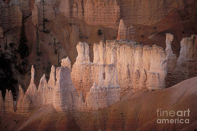 Bryce Canyon Hoodoos Art Print by Sandra Bronstein
