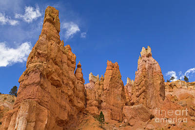Photograph - Bryce Canyon Hoodoos by Yva Momatiuk John Eastcontt
