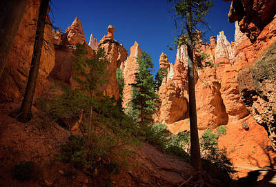 Photograph - Bryce Canyon II by Ricky Barnard