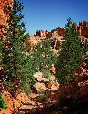 Photograph - Bryce Canyon IIi by Ricky Barnard