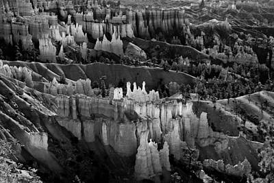 Photograph - Bryce Canyon In Black And White by James BO  Insogna