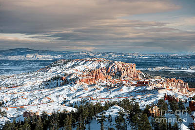 Photograph - Bryce Canyon In Winter by Sandra Bronstein