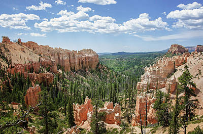 Photograph - Bryce Canyon National Park 5 by Susan McMenamin