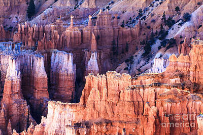 Photograph - Bryce Canyon National Park by Ben Graham