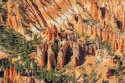 Photograph - Bryce Canyon National Park Hoodoos by Jennie Marie Schell
