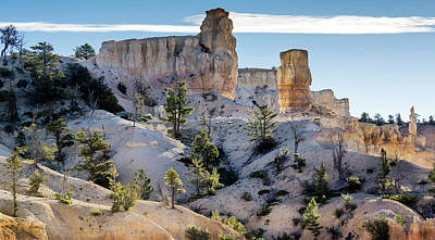 Photograph - Bryce Canyon National Park Landscape by Phil Cardamone