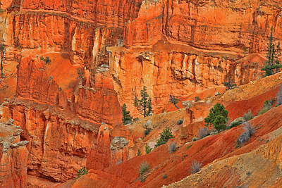 Photograph - Bryce Canyon  12 - Inspiration Point by Allen Beatty