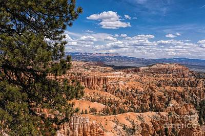 Photograph - Bryce Canyon by Peggy Hughes