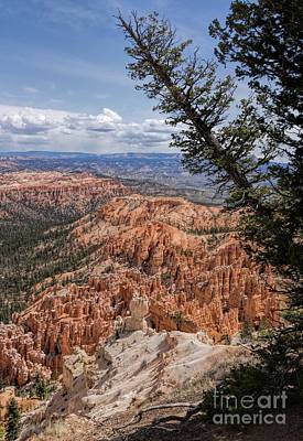 Photograph - Bryce Canyon Portrait by Peggy Hughes