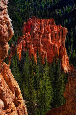 Photograph - Bryce Canyon Red Rock by Bob Coates