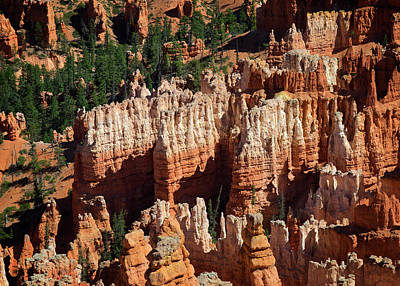 Photograph - Bryce Canyon by Ricky Barnard