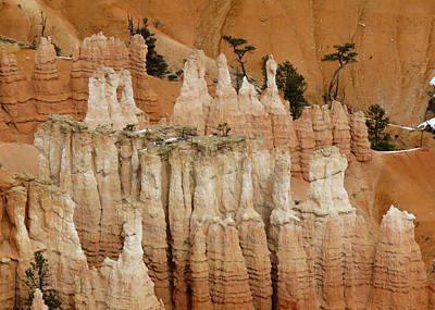 Photograph - Bryce Canyon Series #11 Sandy Hoodoos by Patti Deters