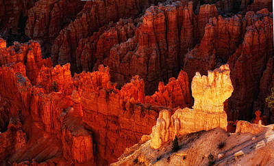 Photograph - Bryce Canyon Sunrise by Bob Coates