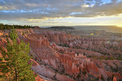 Photograph - Bryce Canyon Sunrise by Ray Mathis