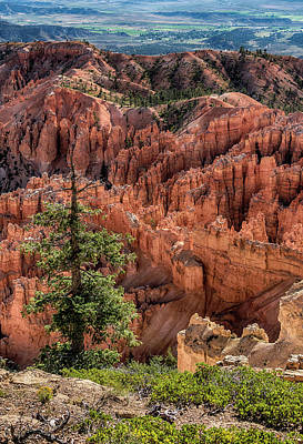 Photograph - Bryce Canyon Utah 7r2_dsc1215_08112017 by Greg Kluempers