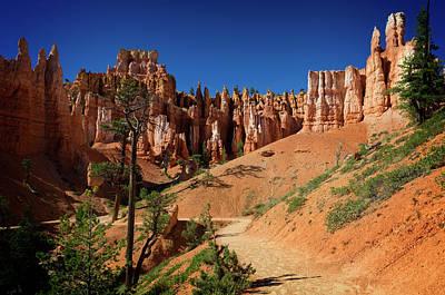 Photograph - Bryce Canyon Vi by Ricky Barnard