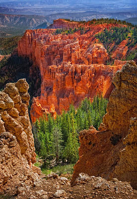 Photograph - Bryce Canyon Vista by Bob Coates