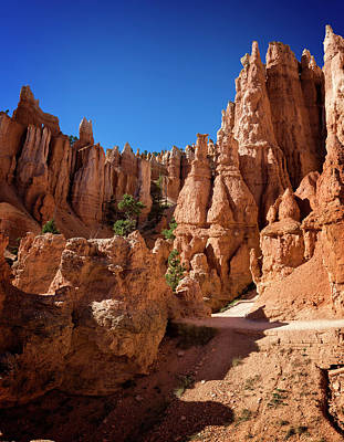 Photograph - Bryce Canyon X by Ricky Barnard