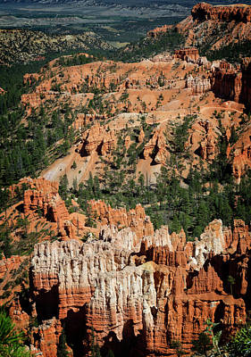 Photograph - Bryce Canyon Xii by Ricky Barnard