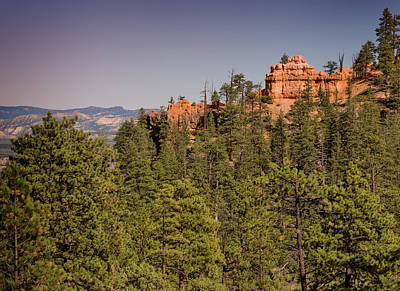 Photograph - Bryce Canyon Xvii by Ricky Barnard