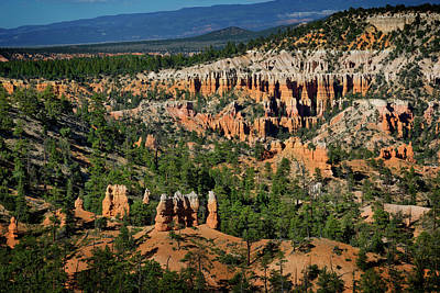 Photograph - Bryce Canyon Xviii by Ricky Barnard