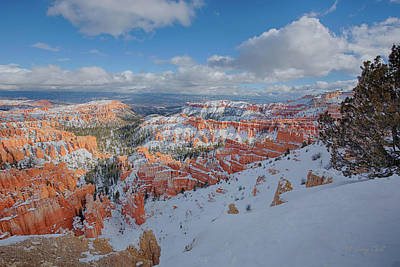 Photograph - Bryce by Gerry Sibell