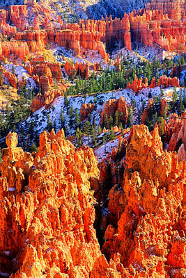Photograph - Bryce Glow by Greg Norrell