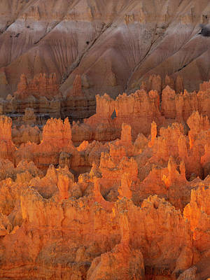 Photograph - Bryce Hoodoos by Emily Dickey