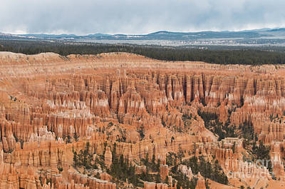 Photograph - Bryce Hoodoos by Louise Magno