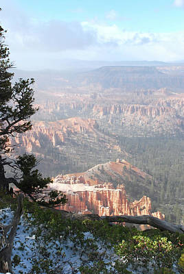 Photograph - Bryce In The Afternoon Light by Michael Tieman