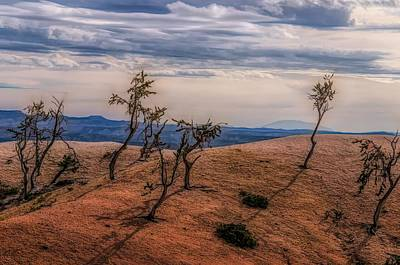 Photograph - Bryce Landscape by Jim Cook