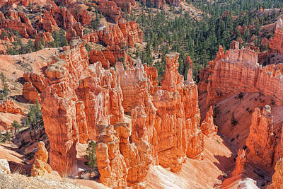 Photograph - Bryce Memories by John M Bailey