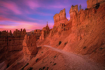 B Photograph - Bryce Trails by Edgars Erglis