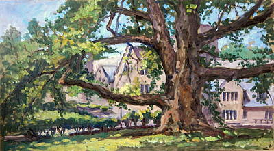 Painting - Bryn Mawr Tree Wide Reach by Thor Wickstrom