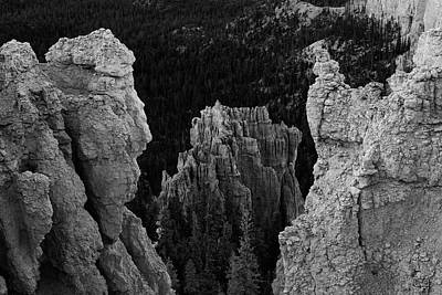 Photograph - Btyce Canyon Np I Bw by David Gordon