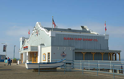 Photograph - Bubba Gump 2 by Fraida Gutovich
