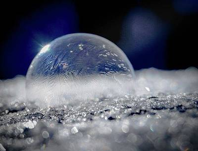 Photograph - Bubble 5 by Jessie Henry