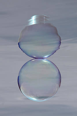 Photograph - Bubble Crown by Cathie Douglas