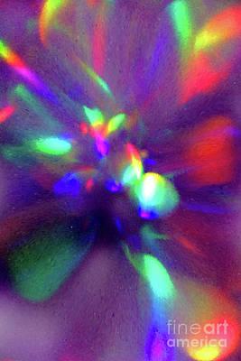 Photograph - Bubble Flower by Karen Adams