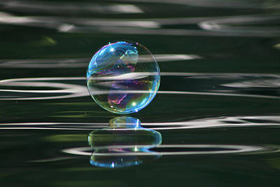 Photograph - Gaia Bubble by Cathie Douglas