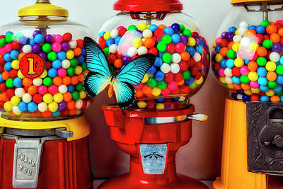 Photograph - Bubblegum Machines And Butterfly by Garry Gay