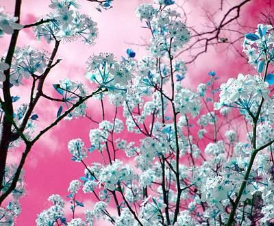 Believe Digital Art - Bubblegum Skies by Kathy Bucari