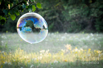 Photograph - Bubbles - 1 by Cheryl McClure