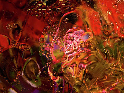 Photograph - Bubbles by Guillermo Rodriguez