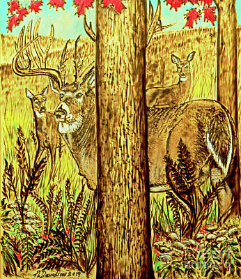 Pyrography - Buck And Deer  by Patricia L Davidson