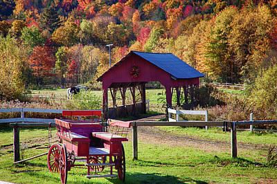 Art Print featuring the photograph Buck Board Ready For Fall Colors by Jeff Folger