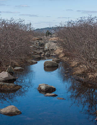 Photograph - Buck Hill Reflections by Brian MacLean