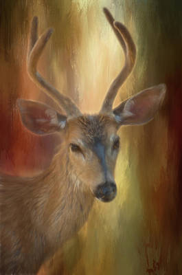 Photograph - Buck by Marilyn Wilson